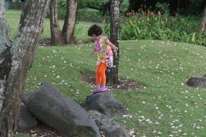 Jugando en el Jardín del MAPR